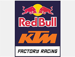 RED BULL RACING COLLECTION